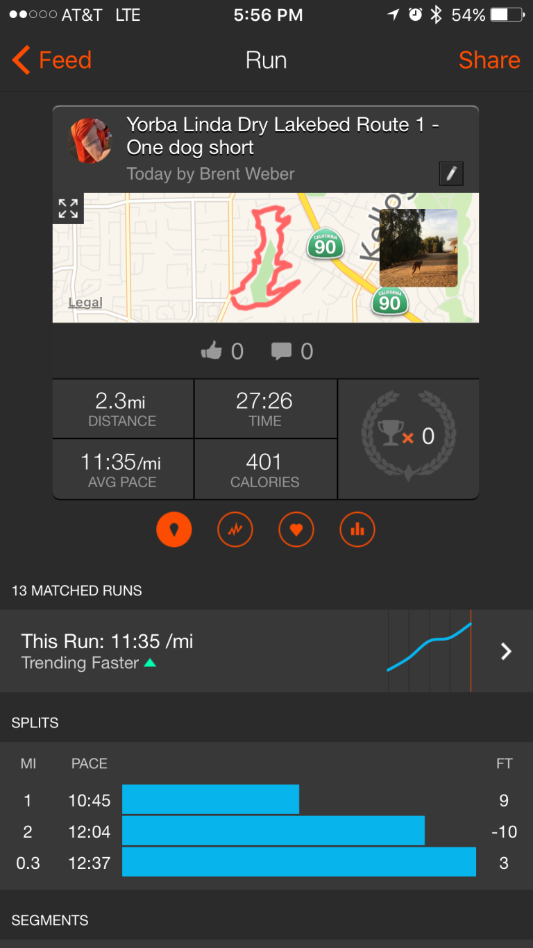 Today's Strava entry for Murph and Web