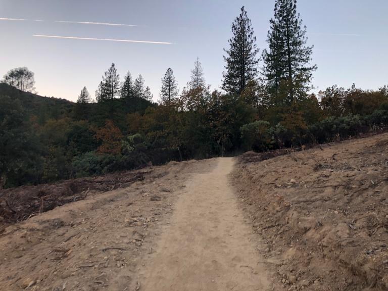Cleared trail