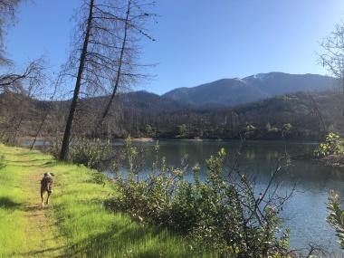 Oak Bottom Ditch Trail Whiskeytown NRA